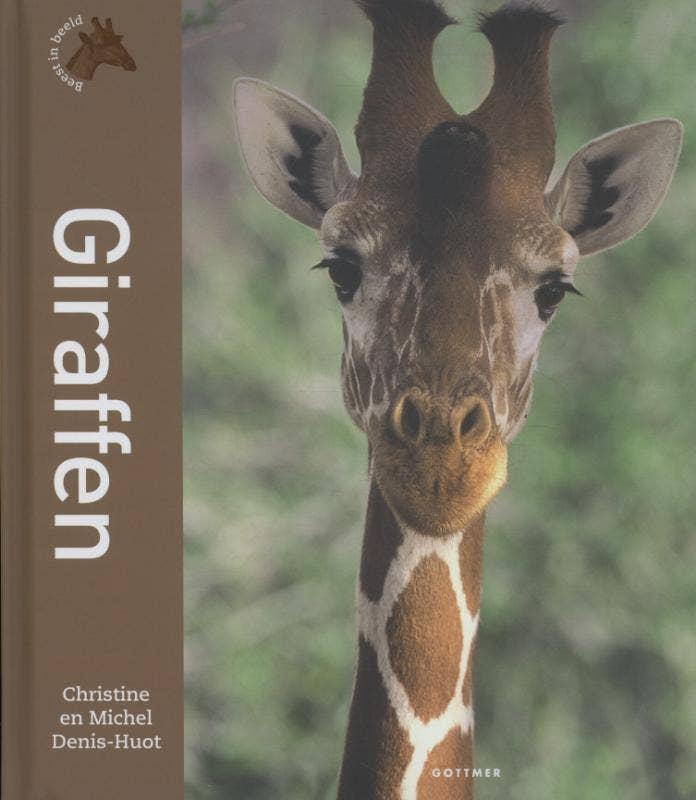 Beest in beeld - Giraffen