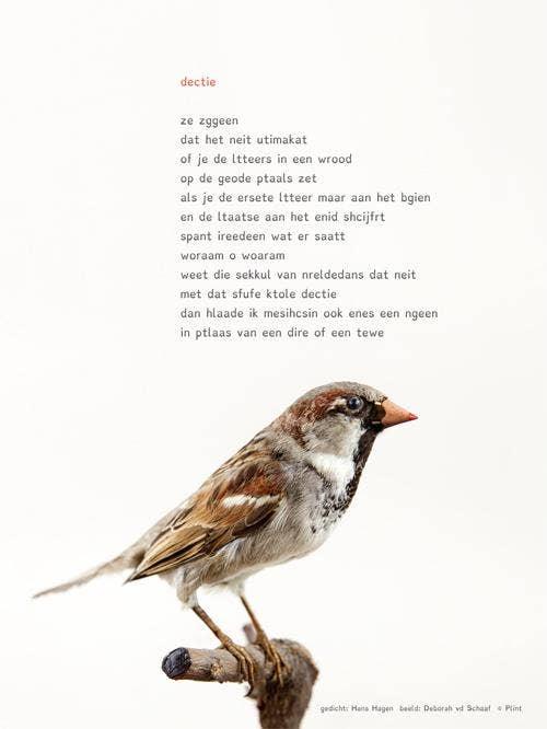 Plint Poezieposter 'Dectie' Hans Hagen