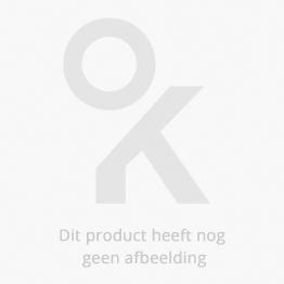 Reuze magnetisch zonnestelsel